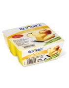 Resource Flan de Frutas 4x100gr