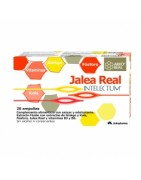 ArkoReal Jalea Real Intelectum 20 Ampollas