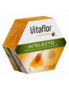 Vitaflor Jalea Real Intelecto 20 viales