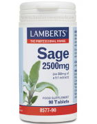 Lamberts Salvia 2500mg 90comp